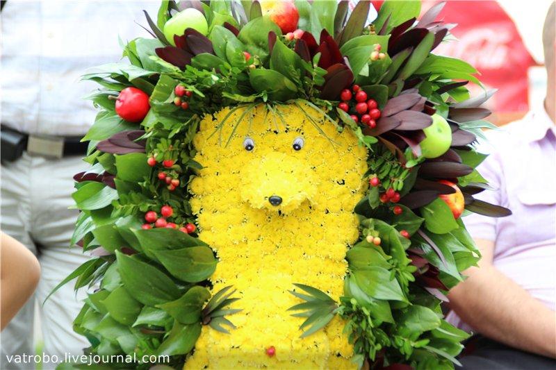 Ежегодный конкурс цветов в Волгограде